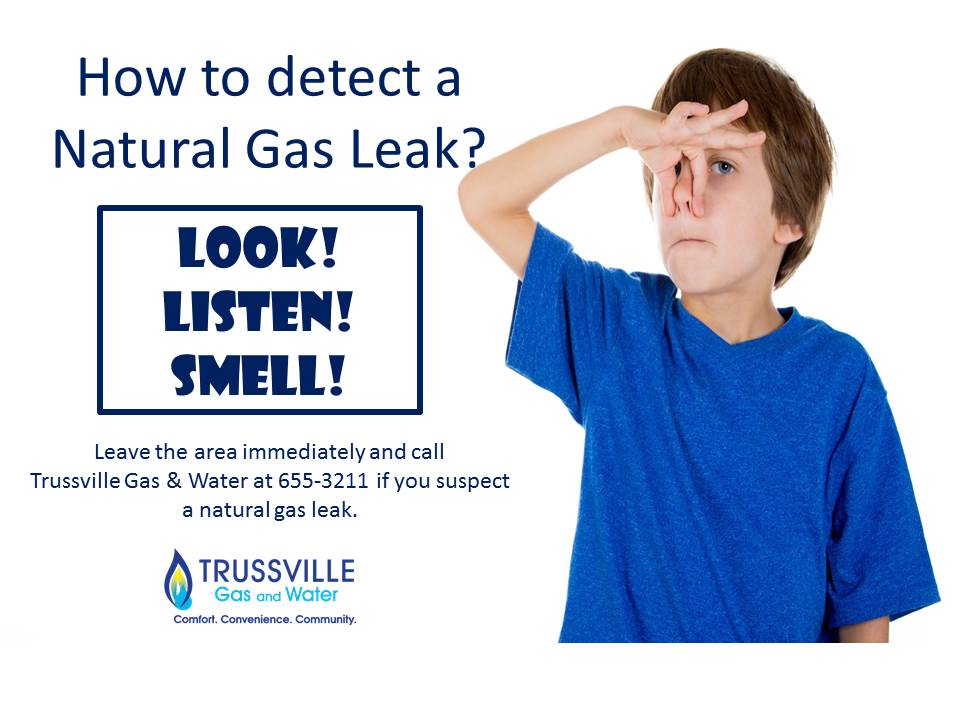 Detecting a Natural Gas Leak